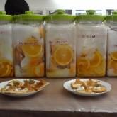 2月第1回の酵素ジュース教室開催のお知らせ♪